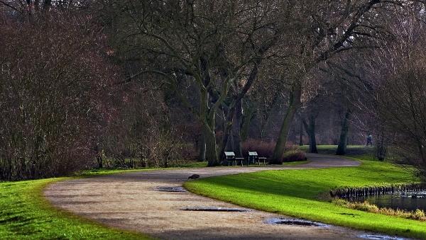 curvas en el parque