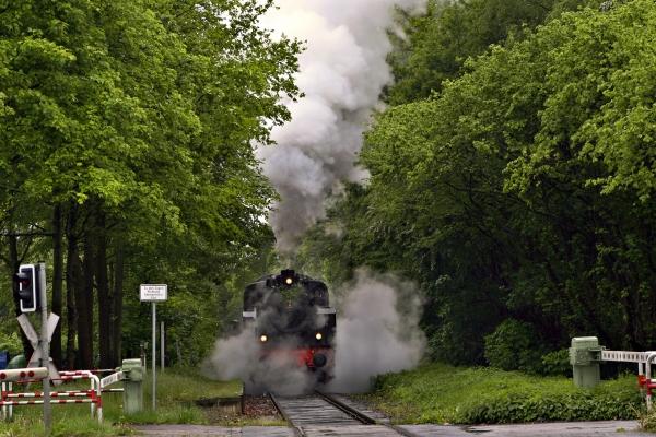 humo fumar tren vehiculo transporte luz