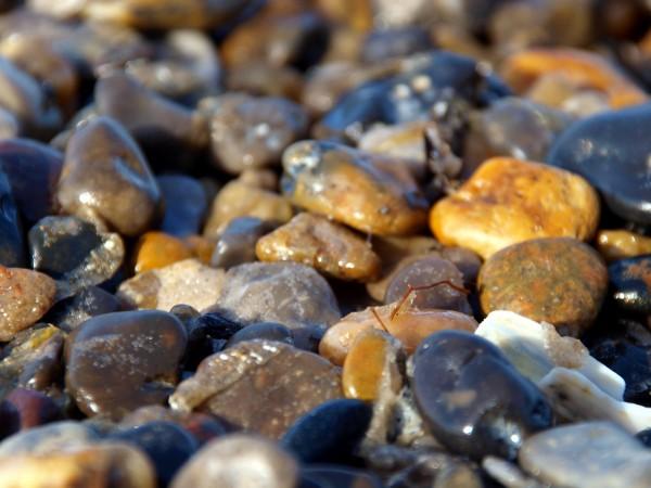 un mar de piedras
