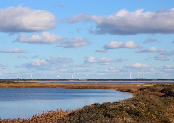 azul medio ambiente horizonte nube campo