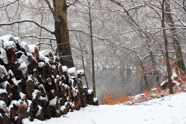 sentimientos emociones invierno tranquilidad nieve