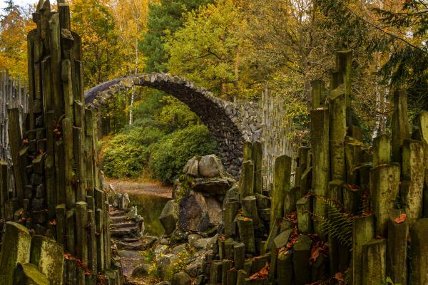 detalle primer plano parque piedra madera