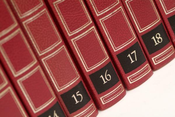 educacion curioso fila orden lexico libros
