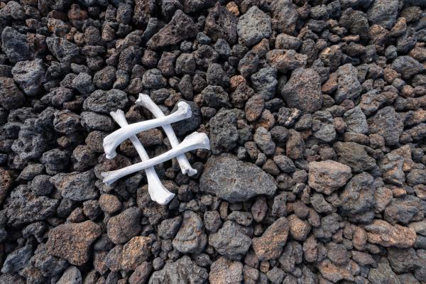 huesos, en, las, piedras - 28218169