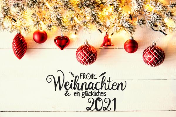 decoracion navidenya roja rama abeto glueckliches