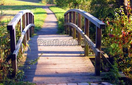 luz arbol arboles parque verde puente