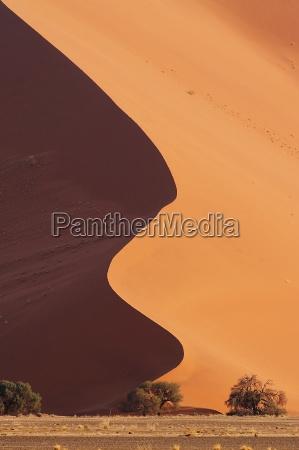 curva de arena ii