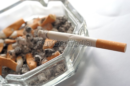 12 cigarrillos