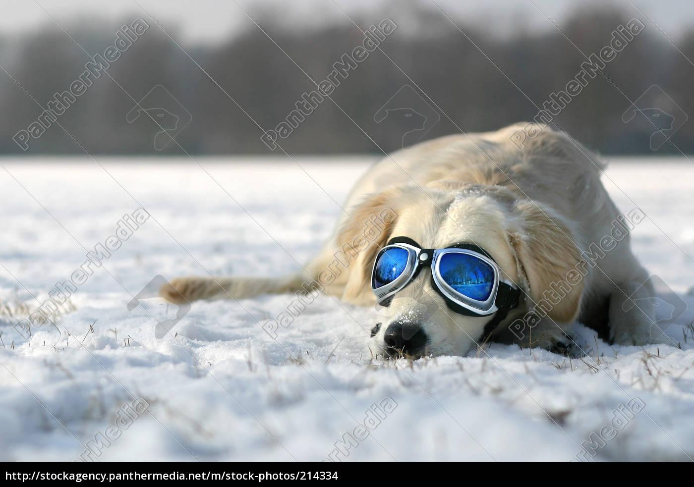 tomar, el, sol, en, invierno - 214334