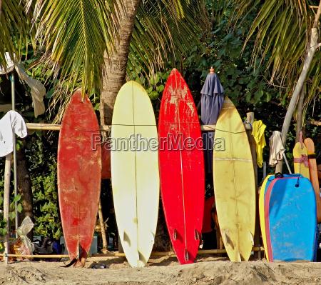 tablas de surf en la playa