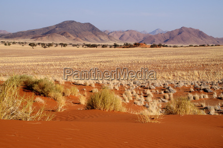 en el borde del desierto de