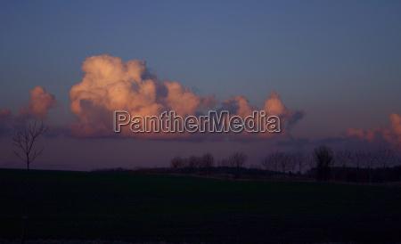 azul arbol arboles nube campo humor