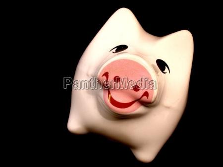 risilla sonrisas china cerdos encantado feliz