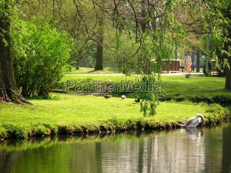 spring in park 3