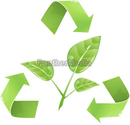 existir medio ambiente cesped