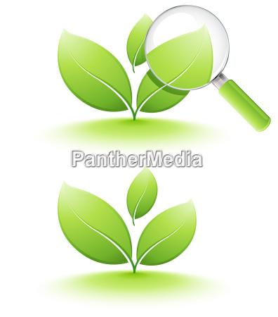vidrio vaso hoja verde reciclaje tratamiento