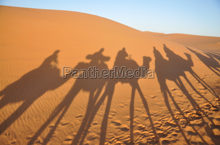 shadow of a caravan in the