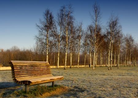 luz parque soleado de noviembre asiento