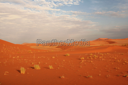 desierto fiesta vacaciones namibia safari arena