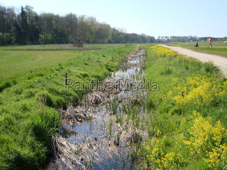 violacion primavera golfo rio agua de