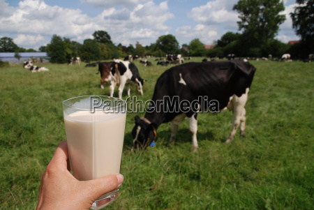 leche fresca