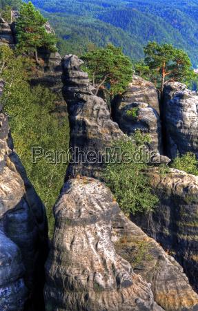 tierra de agujas de roca
