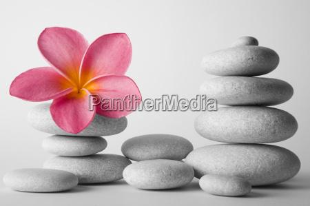 piedra de la pila y del