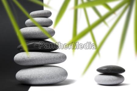 bambu y pebble naturaleza muerta