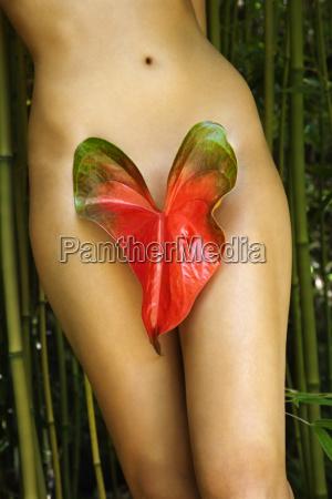mujer desnuda en la naturaleza