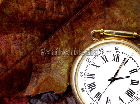 hoja reloj tiempo otonyal hojas de