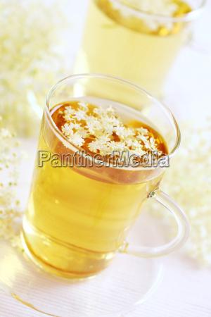 comida te beber bebida flor planta