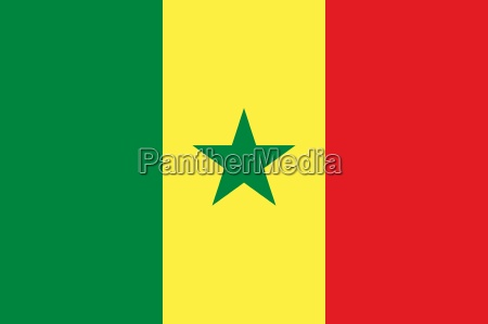the national flag of senegal