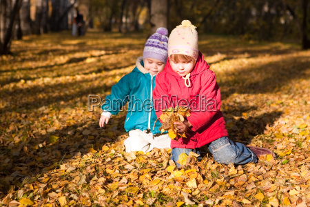 los ninyos tiran las hojas de