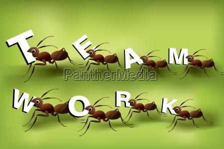 espiritu de trabajo en equipo