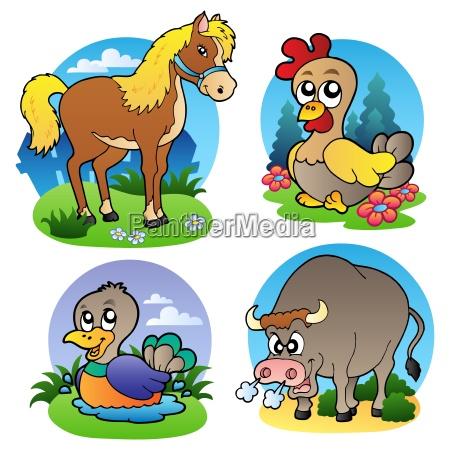 various farm animals 2