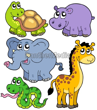 african animals collection 4