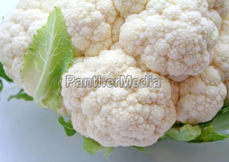 vegetal col coliflor vegetariano fresco
