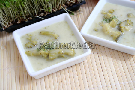vegetal sopa de verduras fresco sopa