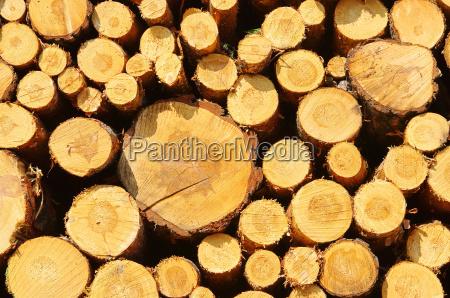 pila de madera pila de