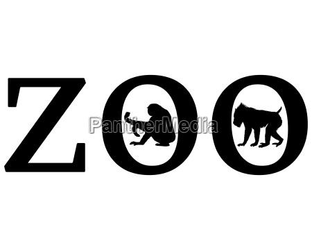 senyal opcional jardin grafico animal mono