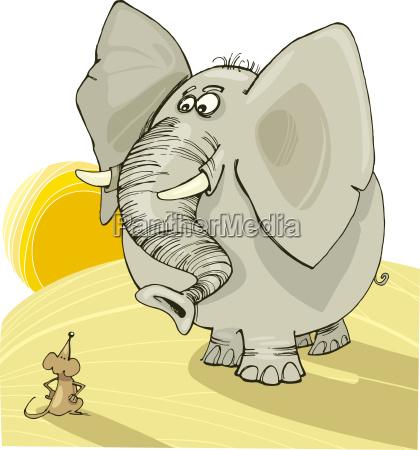 elefante y raton
