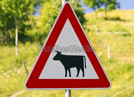 shield caution cows traffic sign