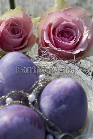 easter eggs in purple with two