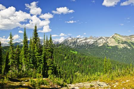 vistas a las montanyas rocosas desde