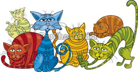 grupo de gatos de colores