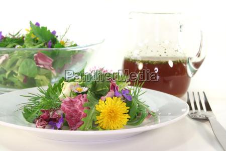dandelion culinary herbs lambs lettuce herbs