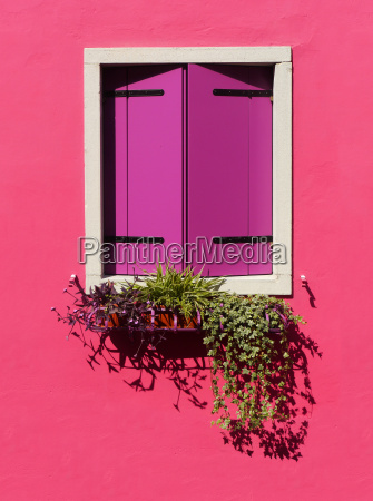 window in burano