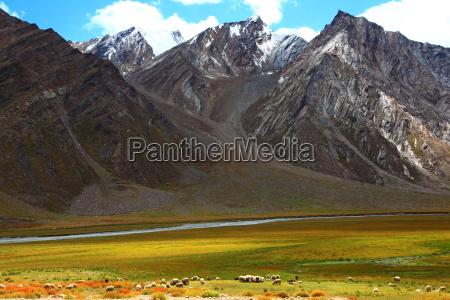 india tibet montanya budismo himalaya zanskar