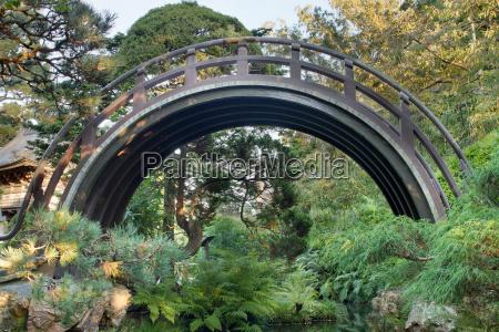 curved wooden bridge at japanese garden