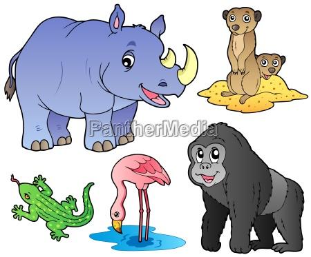 animales del zoo set 1